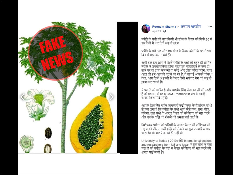 Fact Check: No, tea made of papaya leaves cannot cure cancer